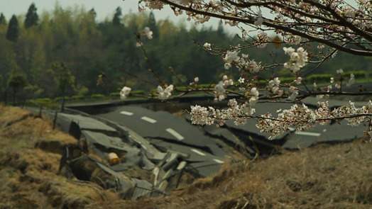 Tsunami_and_the_cherry_blossom_filmstill5